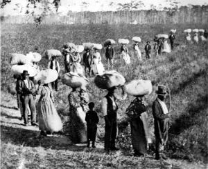 Esodo degli schiavi, 1866