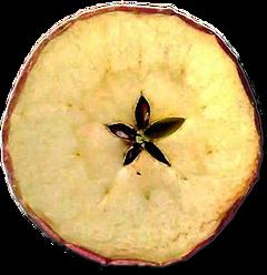 amuleto-mela
